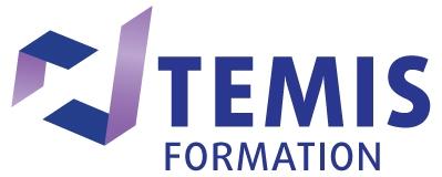 Logo TEMIS Formation