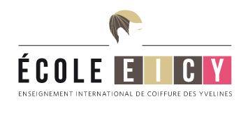 Logo eicy
