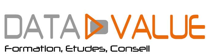 Logo Data Value