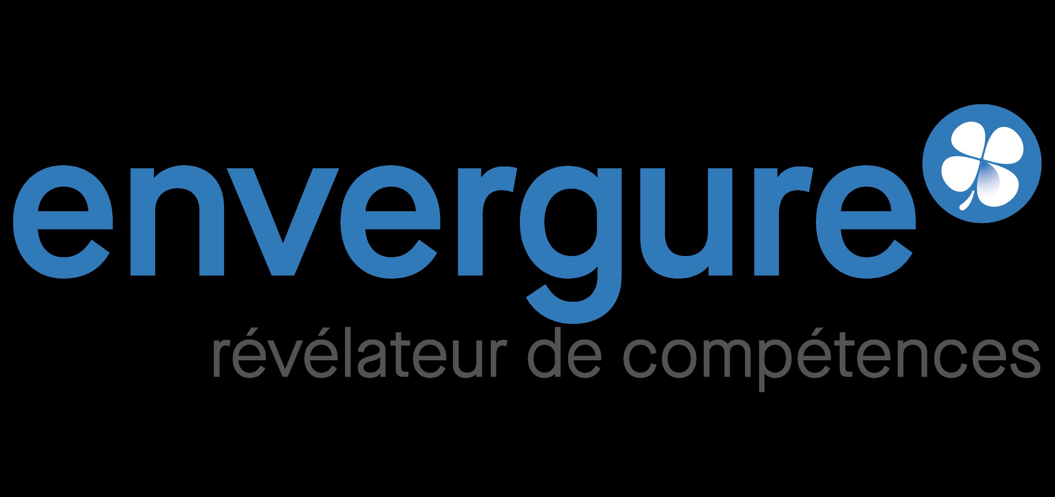 Logo envergure 2019