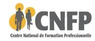 Logo CNFP