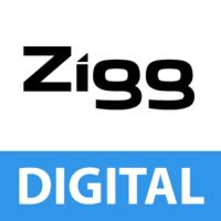 Logo Ziggourat Formation