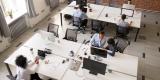 La diffusion du numérique et de l'écologie dans les PME franciliennes : comprendre et mesurer