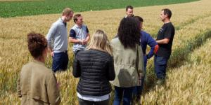 Préparation de diplômes agricoles : un décret précise les durées de formation