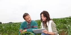 environnement, ecoconseillers, metiers verts