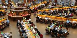 Blocs de compétences : au tour du Doctorat !