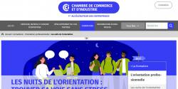 Cpature du site Les Nuits de l'Orientation