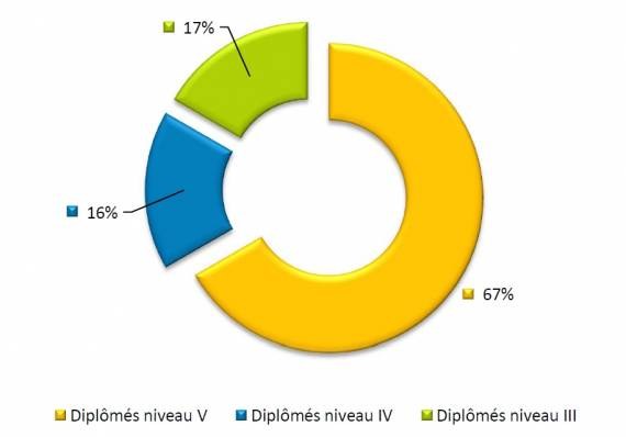 Répartition par niveau des diplôme en Ile-de-France