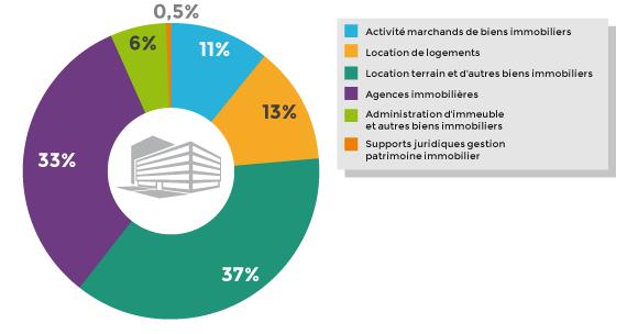 Répartition des entreprises dans les différentes activités immobilières